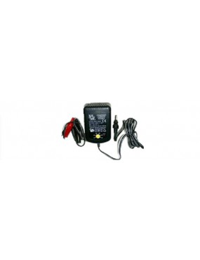 BATTERY CHARGER WITH AMPERAGE REGULATION [CBA2]